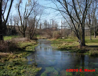 Classic Spring Creek Photographed by Gene Macri
